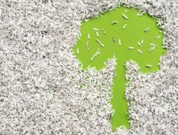 Beidseitiger Papierdruck ökologisch und effizient